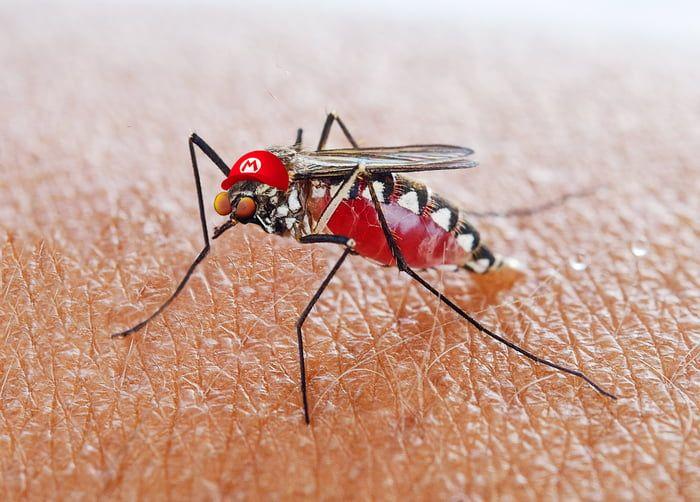 It's me Malario