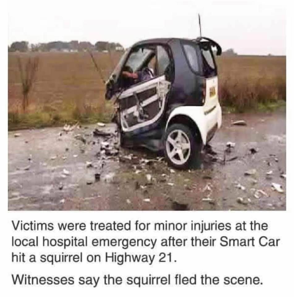 Suspect still at large.