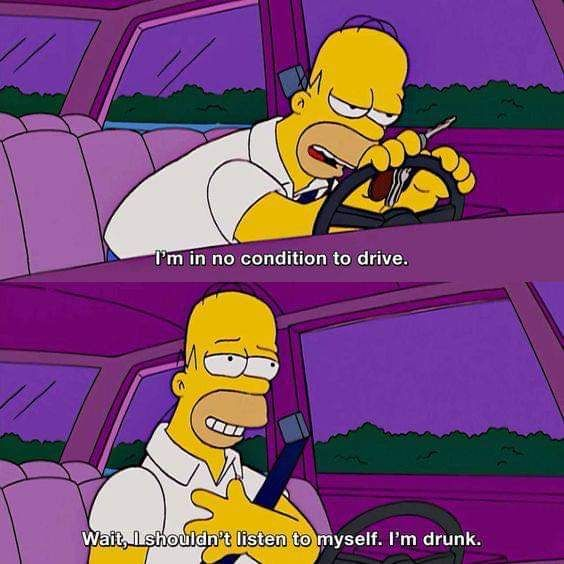 Homer,the smart guy