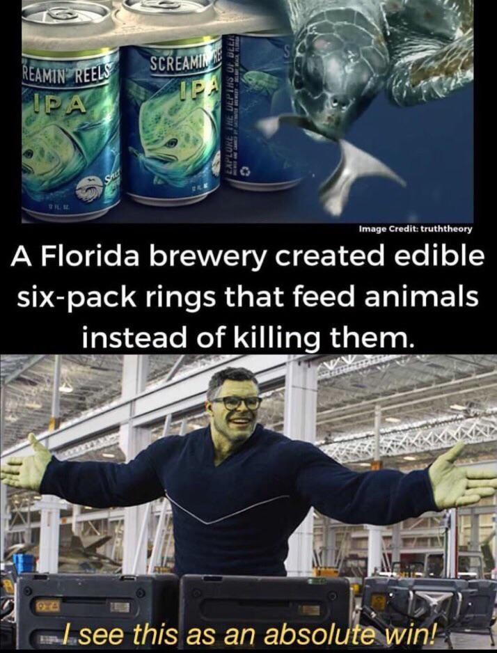 Florida did a good