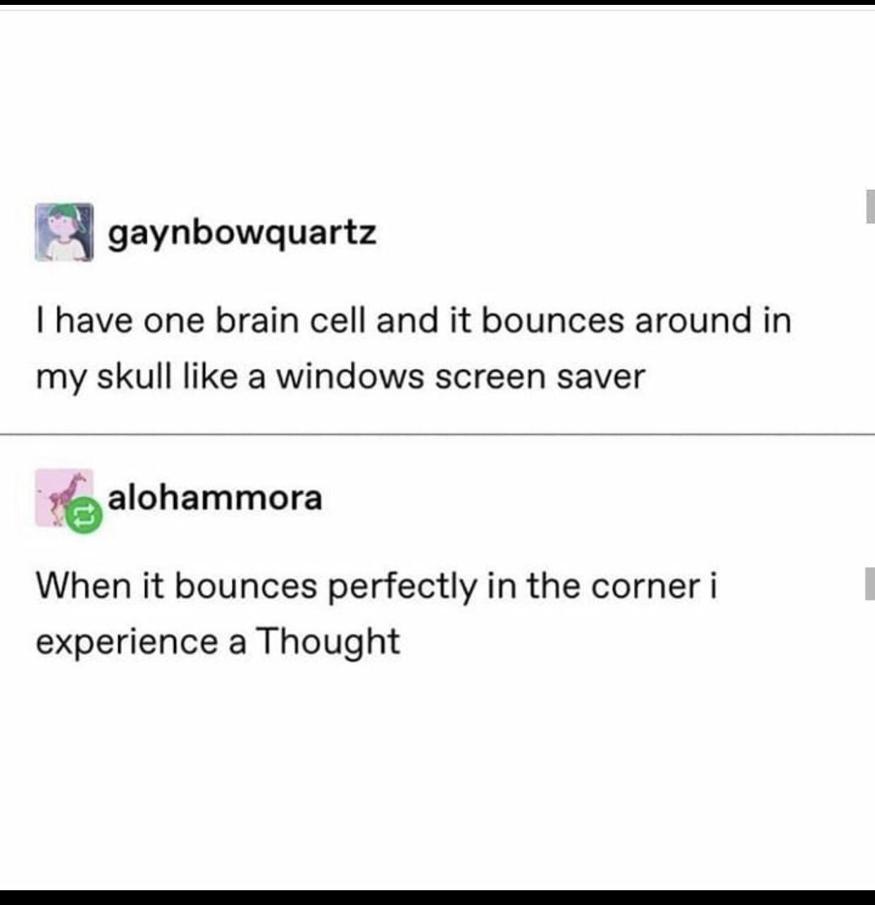My brain exactly