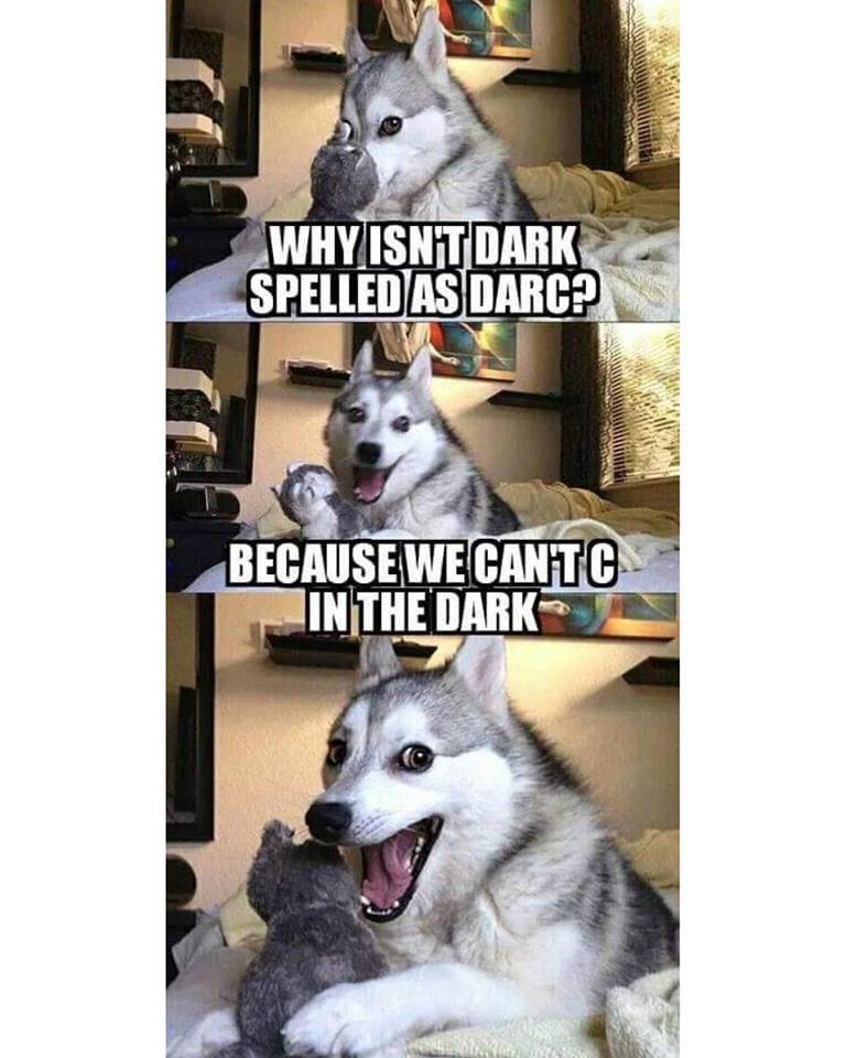 husky telling a joke ....