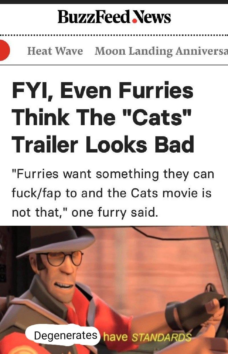 Never thought of furries having standards