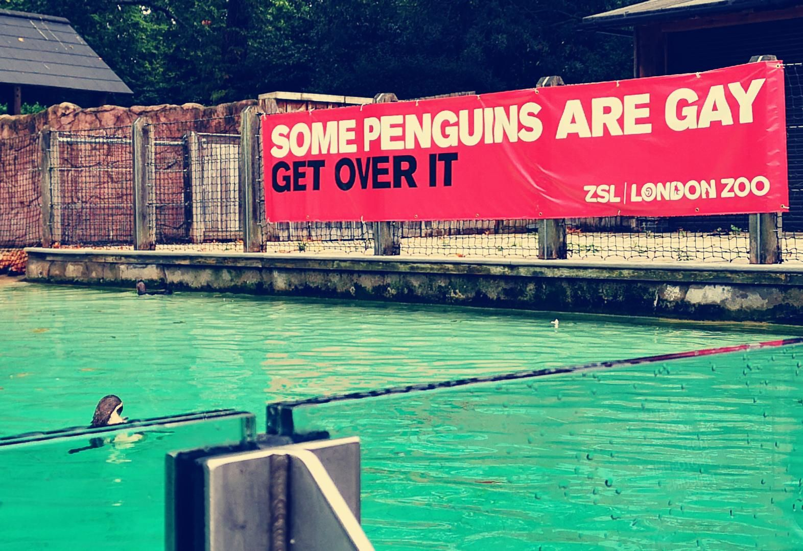 ZSL London Zoo gets it!