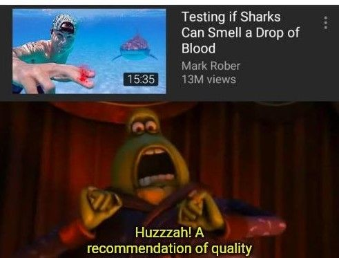 Sharks can smell that you're gay