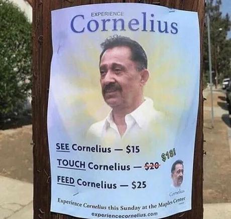 Experience Cornelius