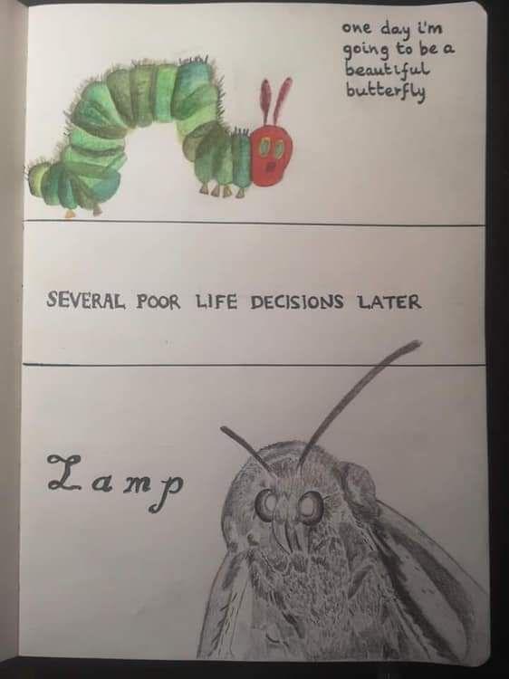 The sad life of a caterpillar