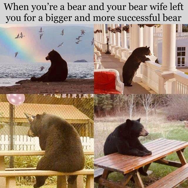 *sad bear noises*