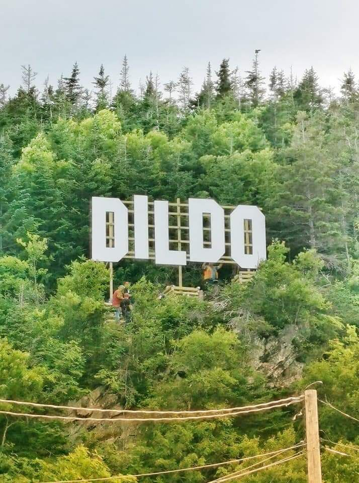 The town of Dildo, Newfoundland, Canada just erected a new sign.