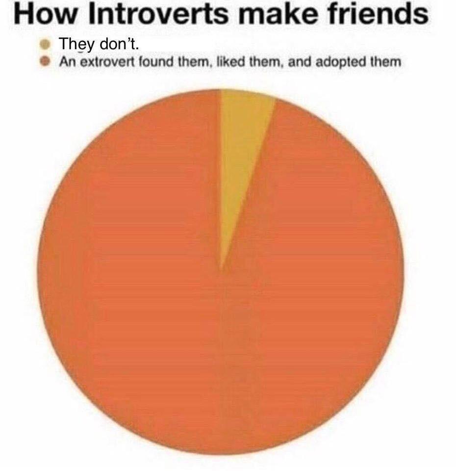 Extrovert, adopt me!!