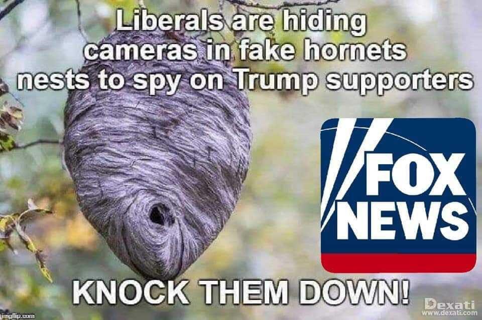 Fox News is never wrong.
