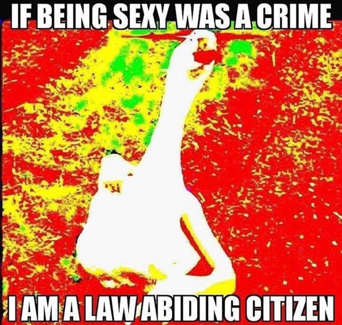 I'm innocent