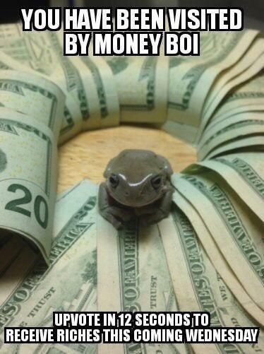 Money frog is here!