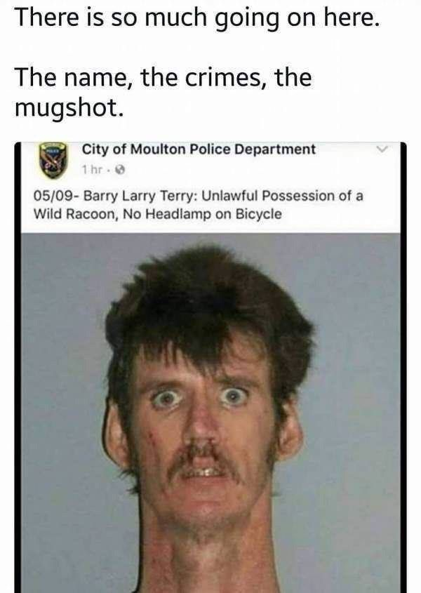 Barry Larry Terry
