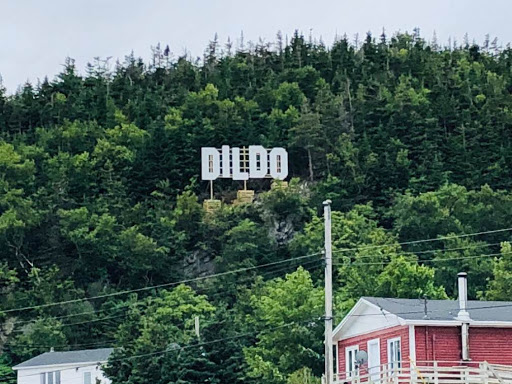 Jimmy Kimmel paid for this sign in Dildo, NL