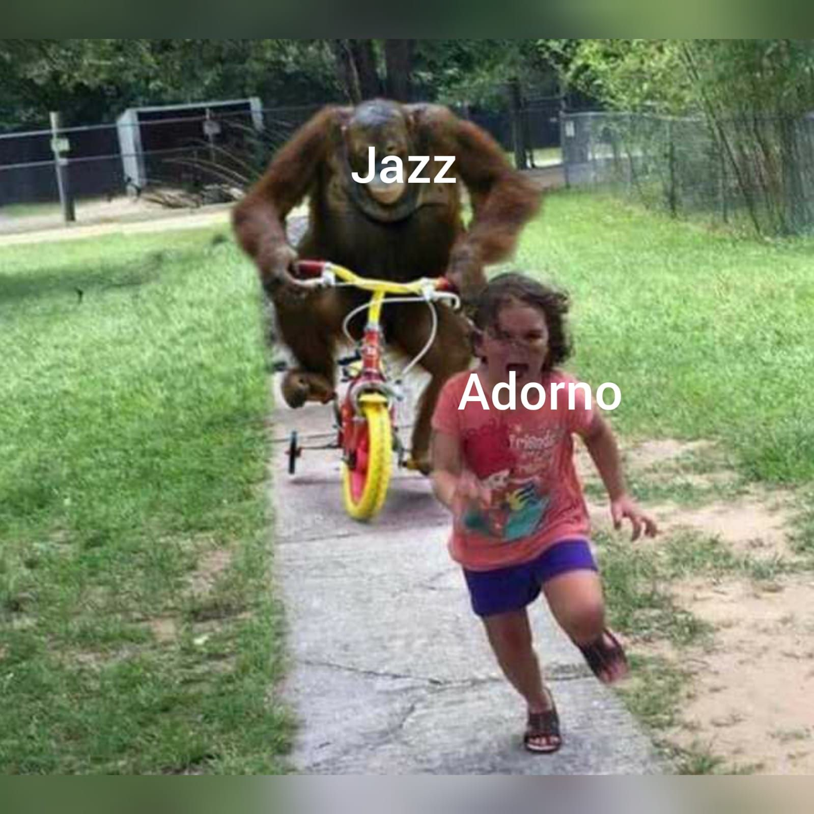 Do you like jazz?
