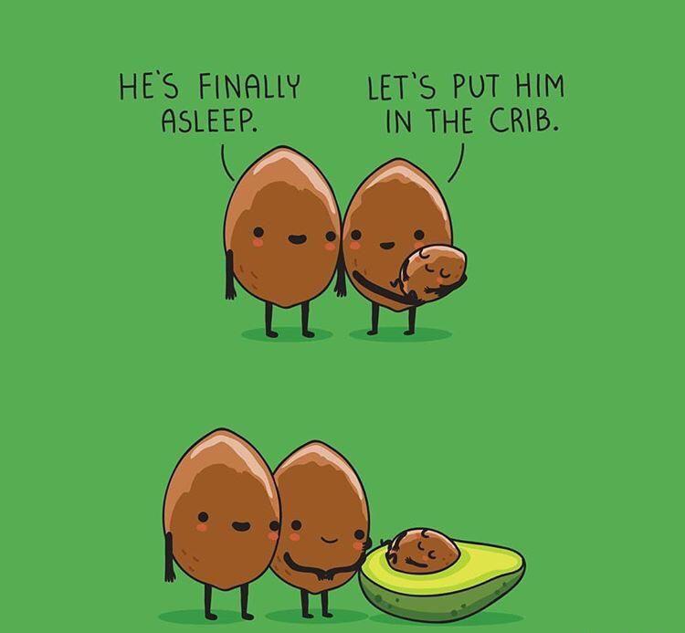 Little baby avocado