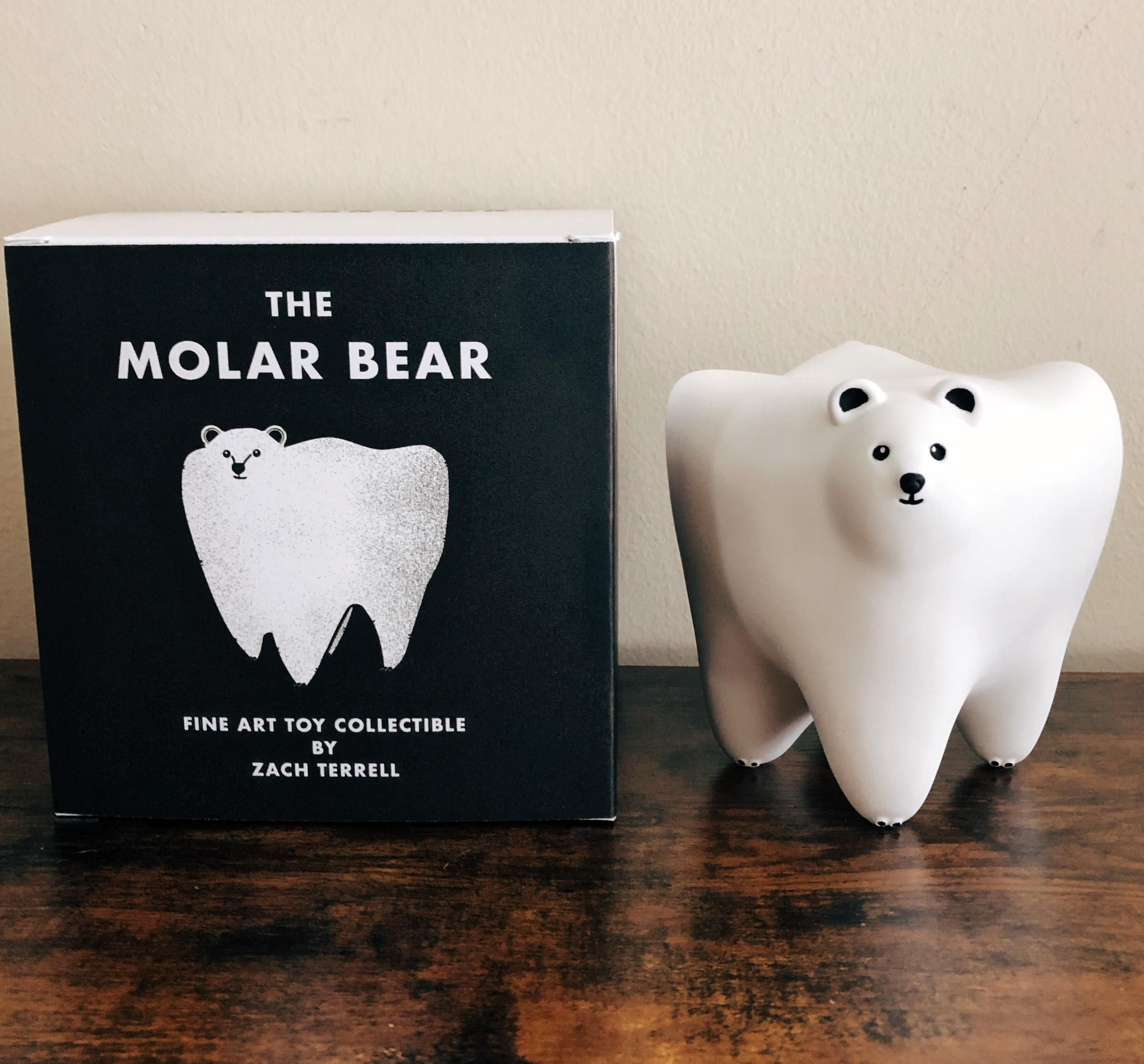 You guys liked the artwork a couple of years ago, so I wanted to show you the figure! Meet the Molar Bear!
