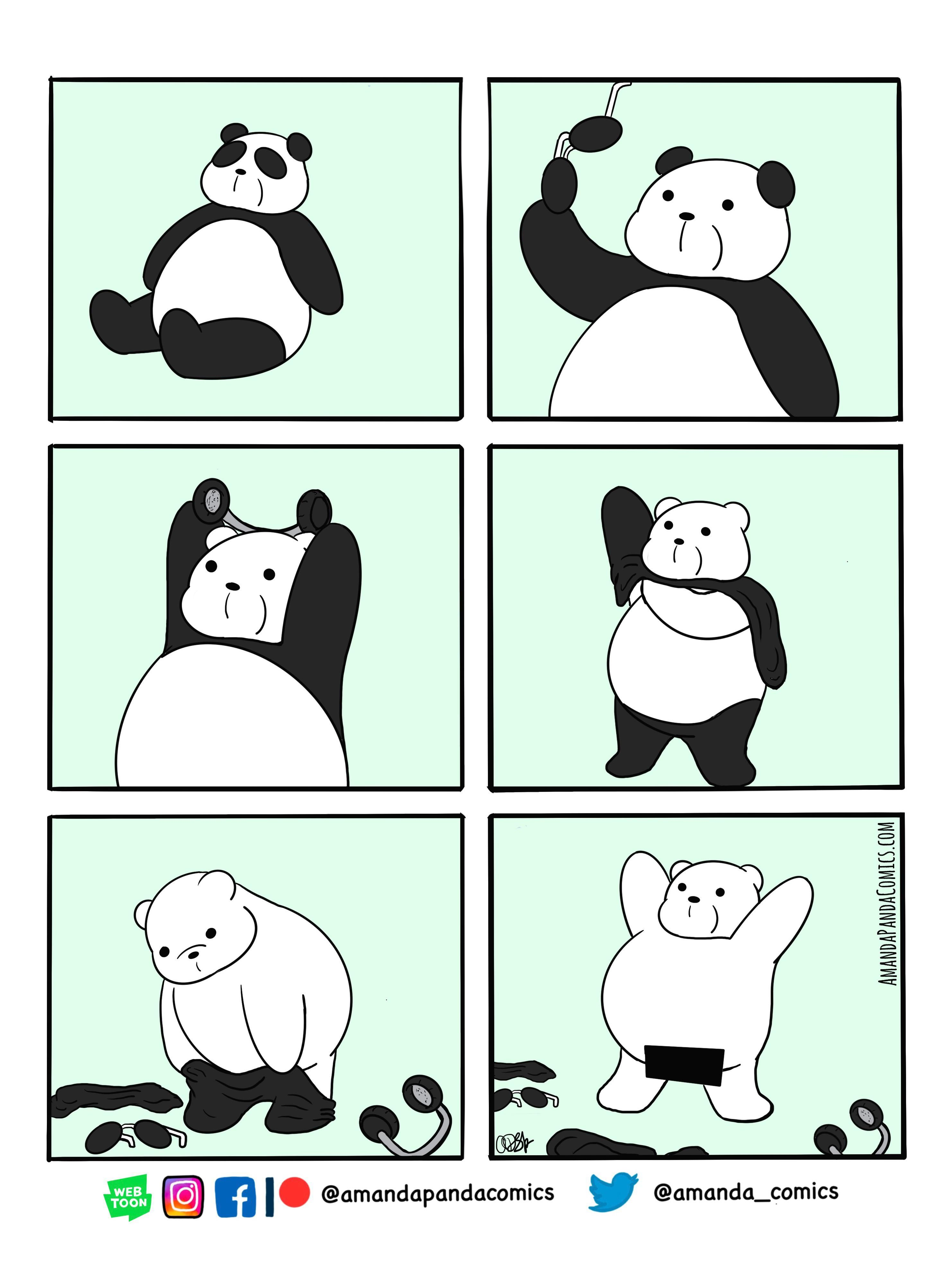 Bear Neked