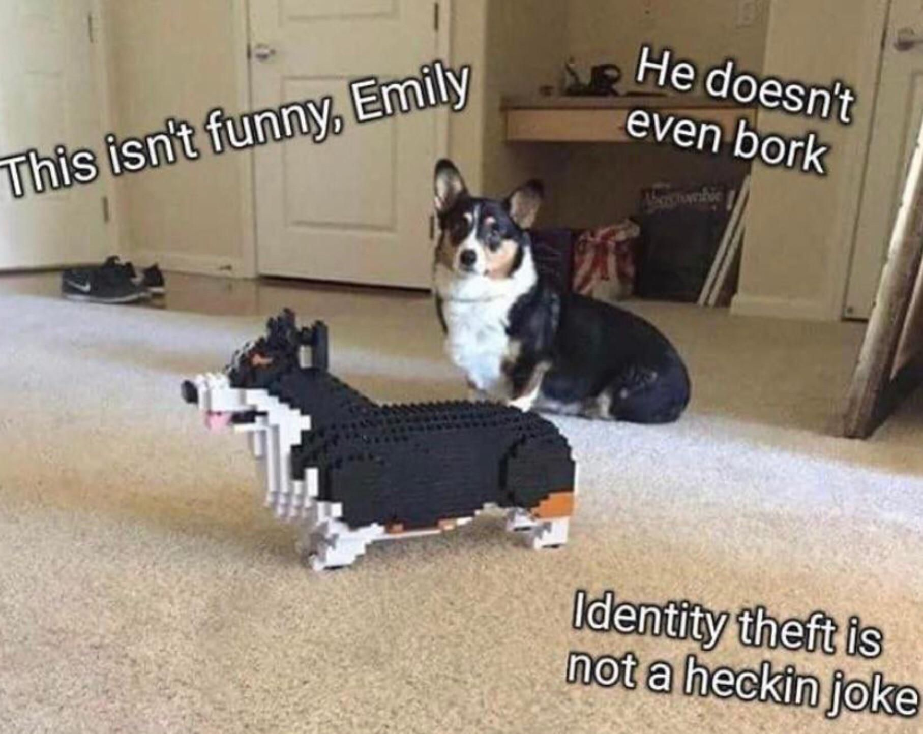Real dog meets his Lego counterpart