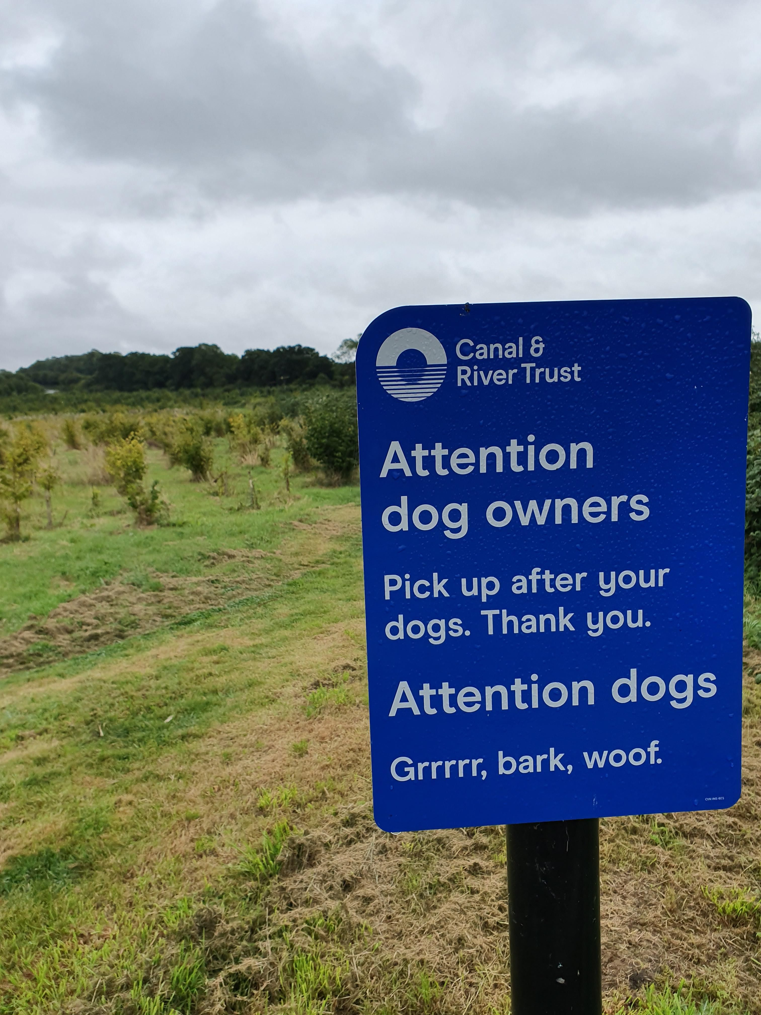 Attention dog owners...