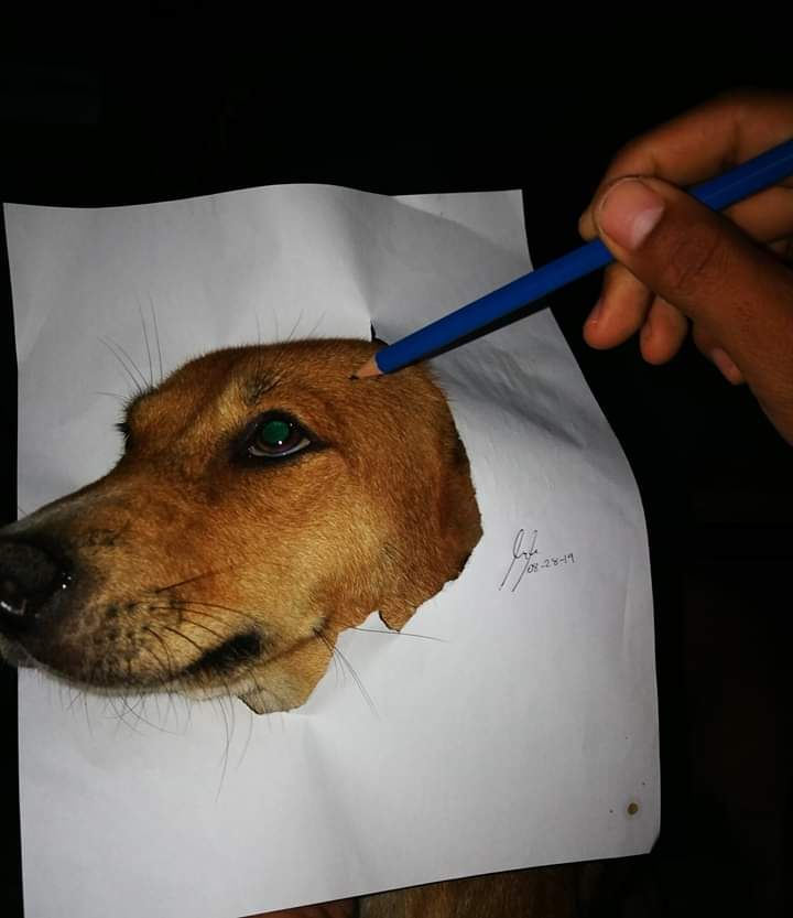 My first time to draw my dog. Please be nice.