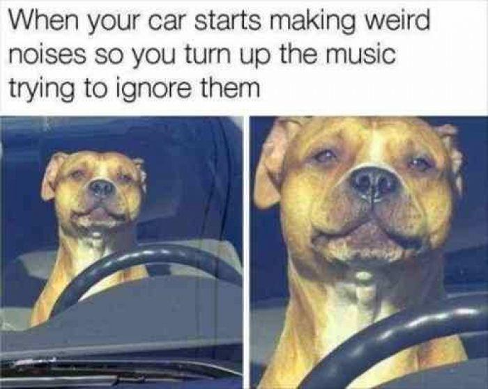 It's just the radio.