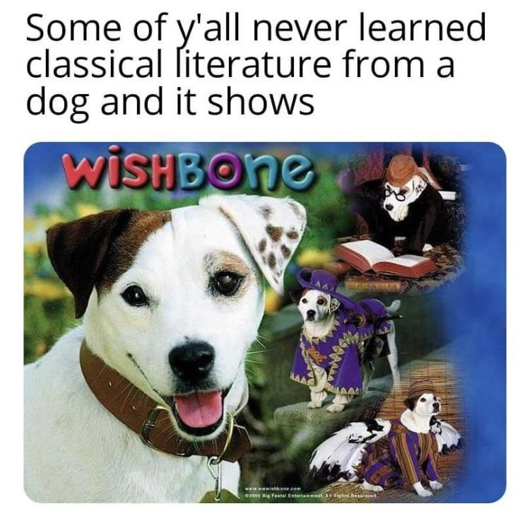 What's the Story, Wishbone