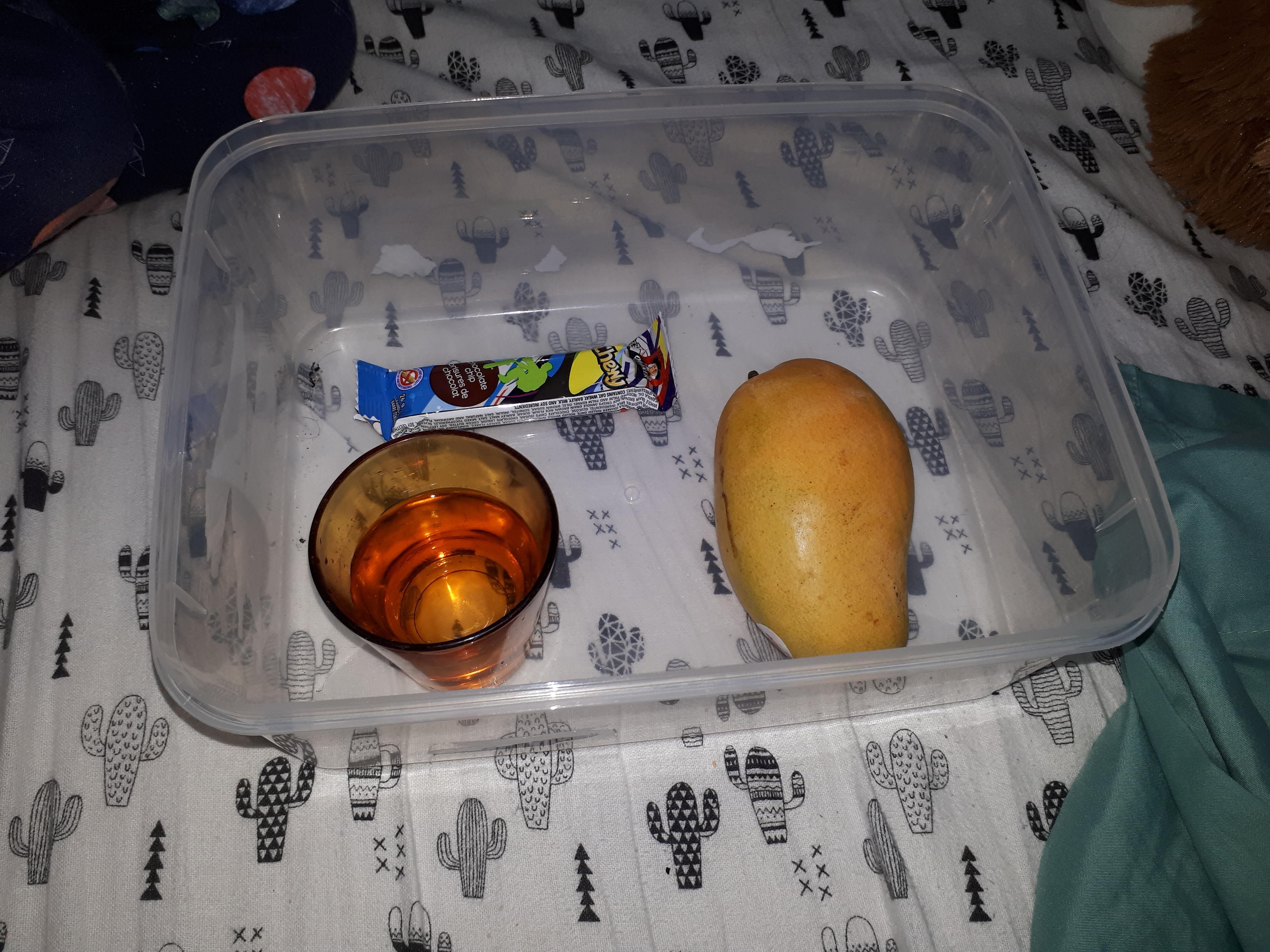 My 4 y/o made me breakfast in bed