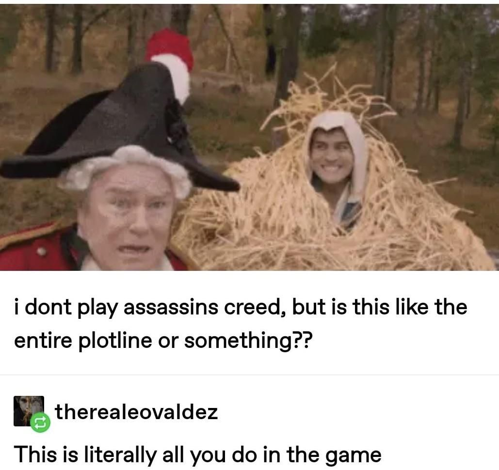 Assassins creed in a nutshell