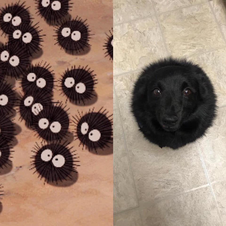 The same?