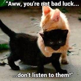 Too cute to be unlucky