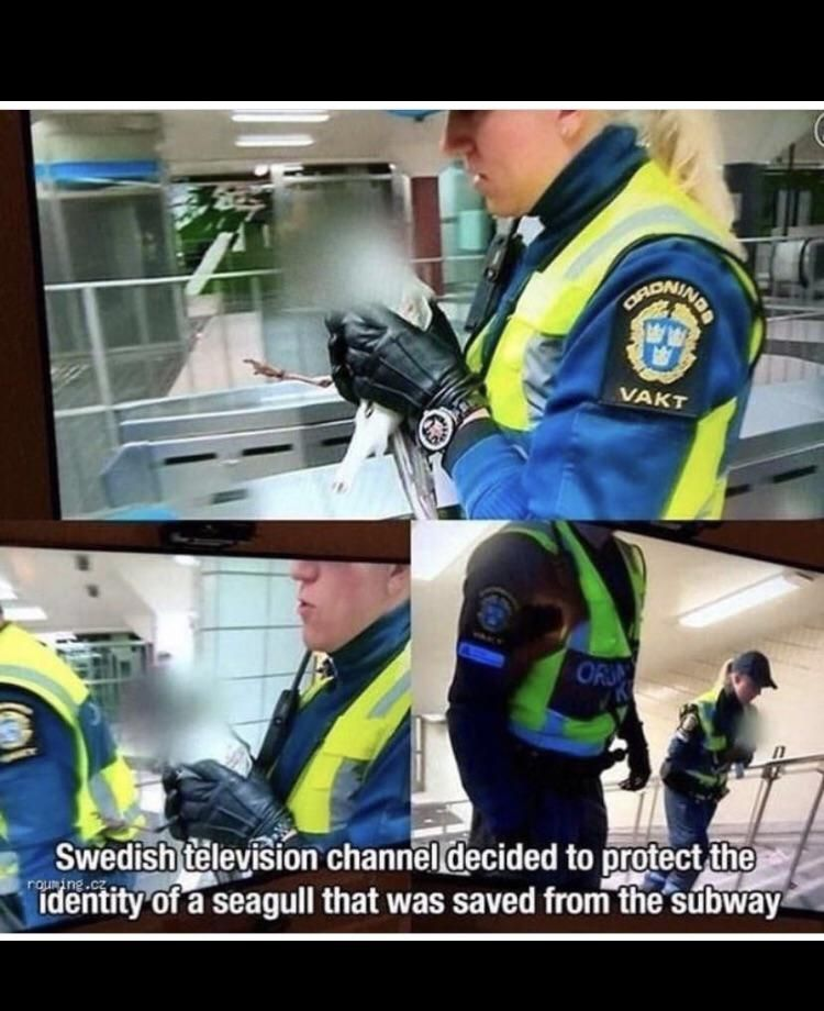 swedish police doing gods work