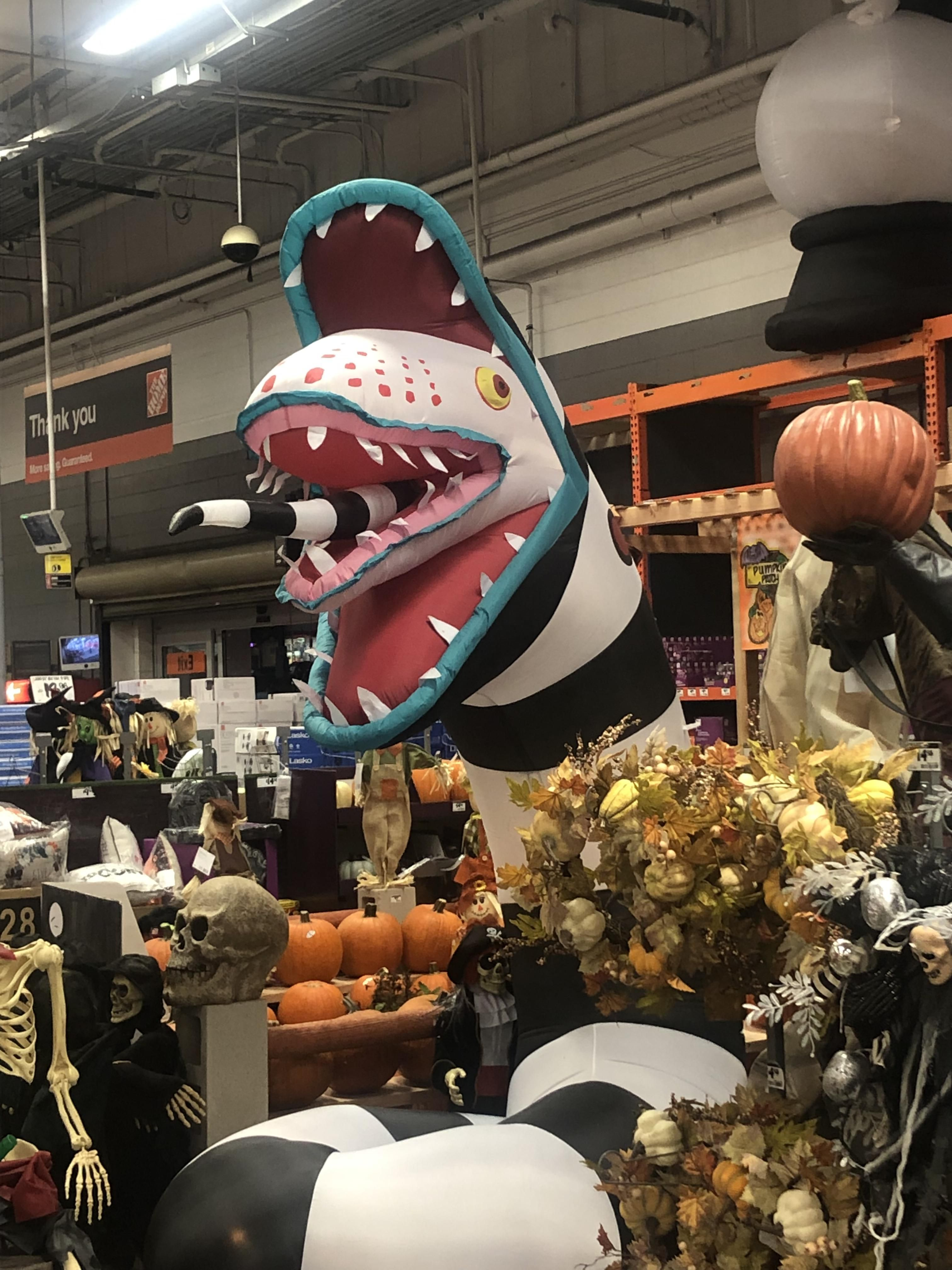 They sell the God damned sand worm from Beetlejuice at Home Depot and I can't tell if life is over or just beginning.