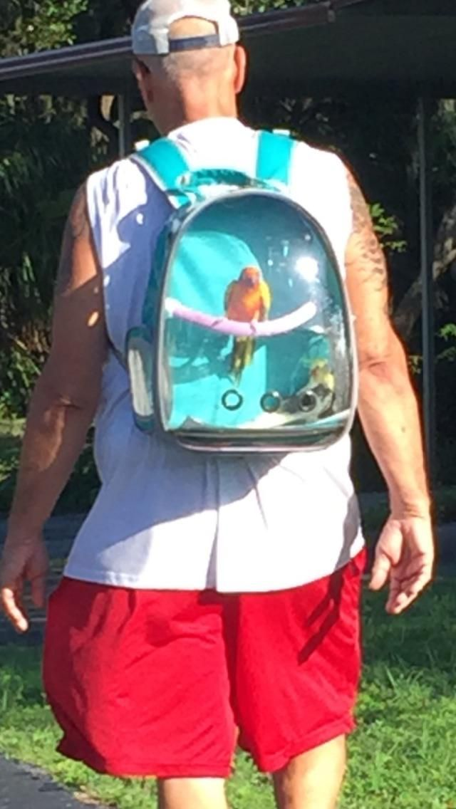 Just out birdie backpacking