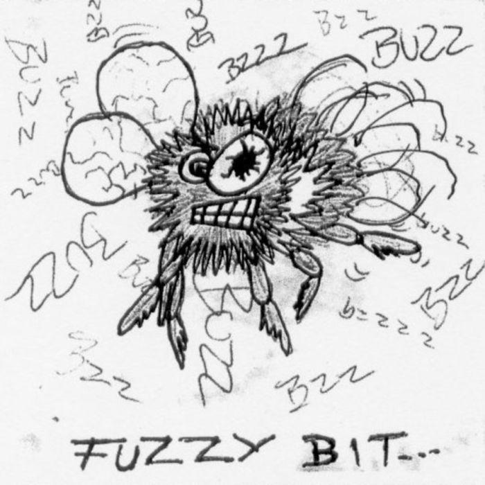 Fuzzy Bit