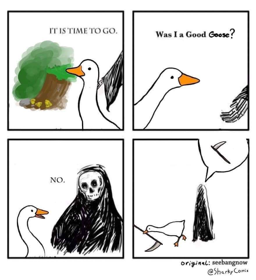 You can't stop the *quack*