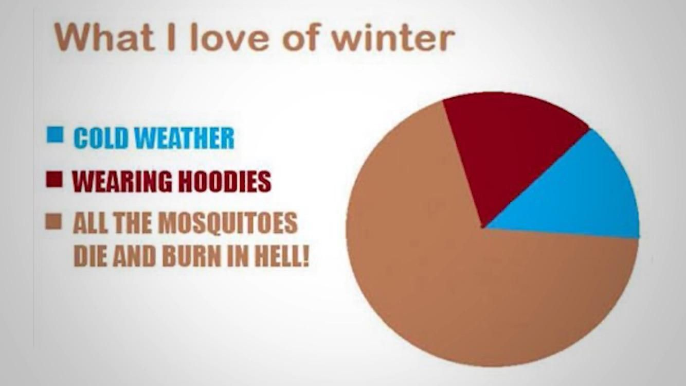 What i love of winter