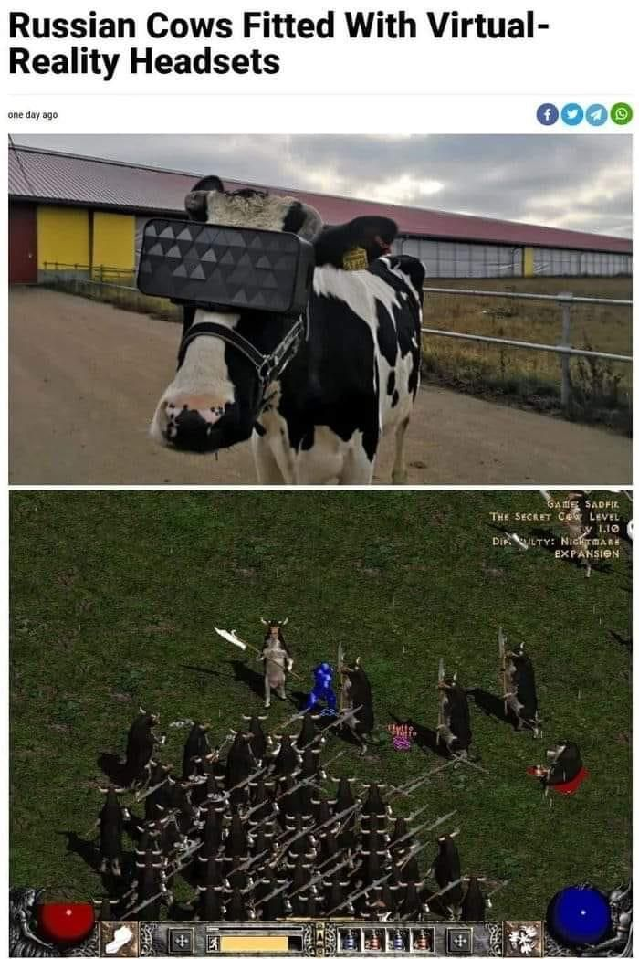 Turns out there is a cow level.