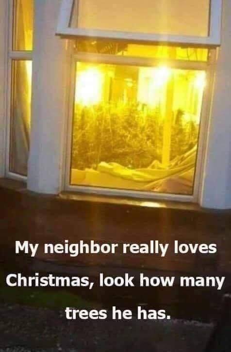 24 days till Christmas