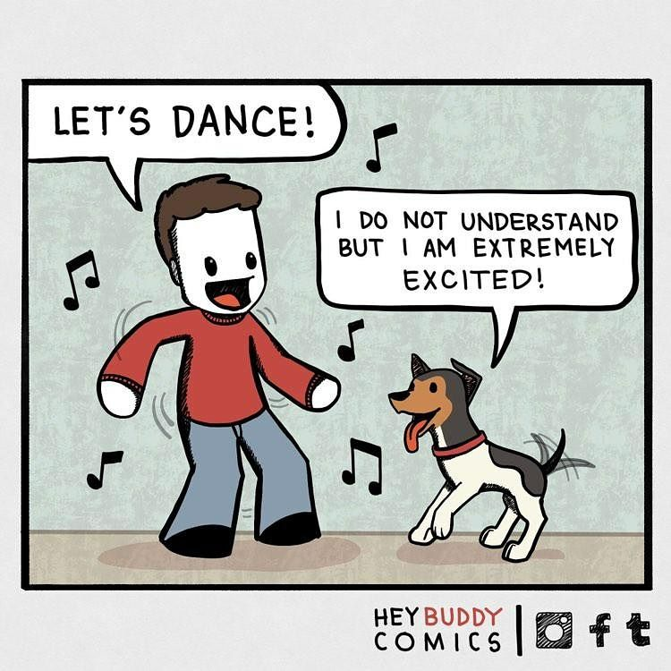 dogs are always down to party