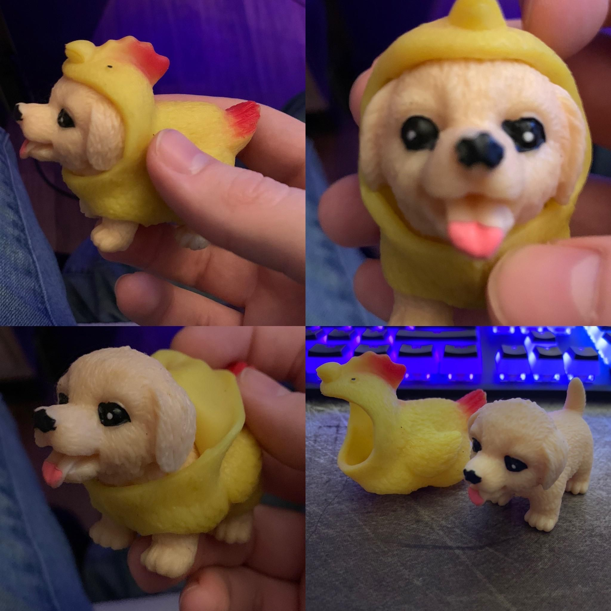 Just found this little rubber dog toy with a fully removable chicken suit in my house, it's wild