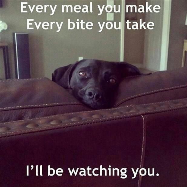 He'll be watching