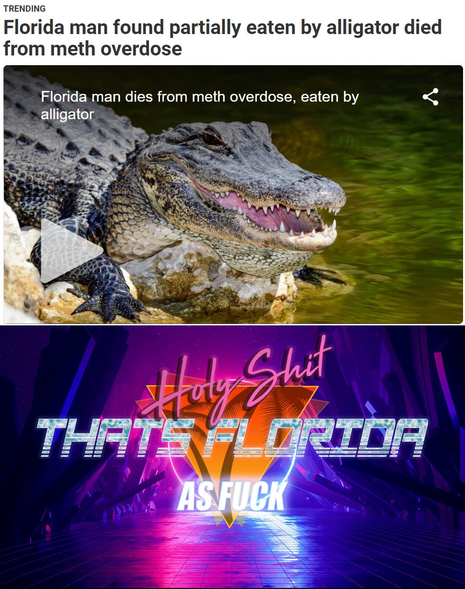Florida As ***