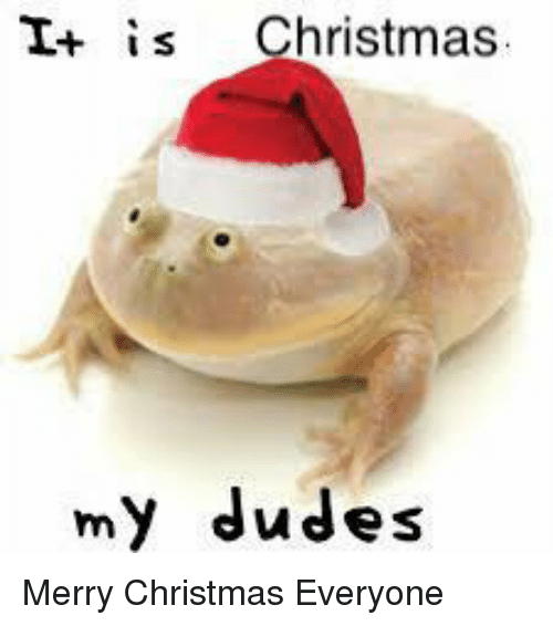 Merry Christmas my dudes