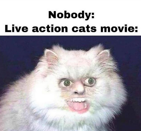 Go see cats, in theaters now.