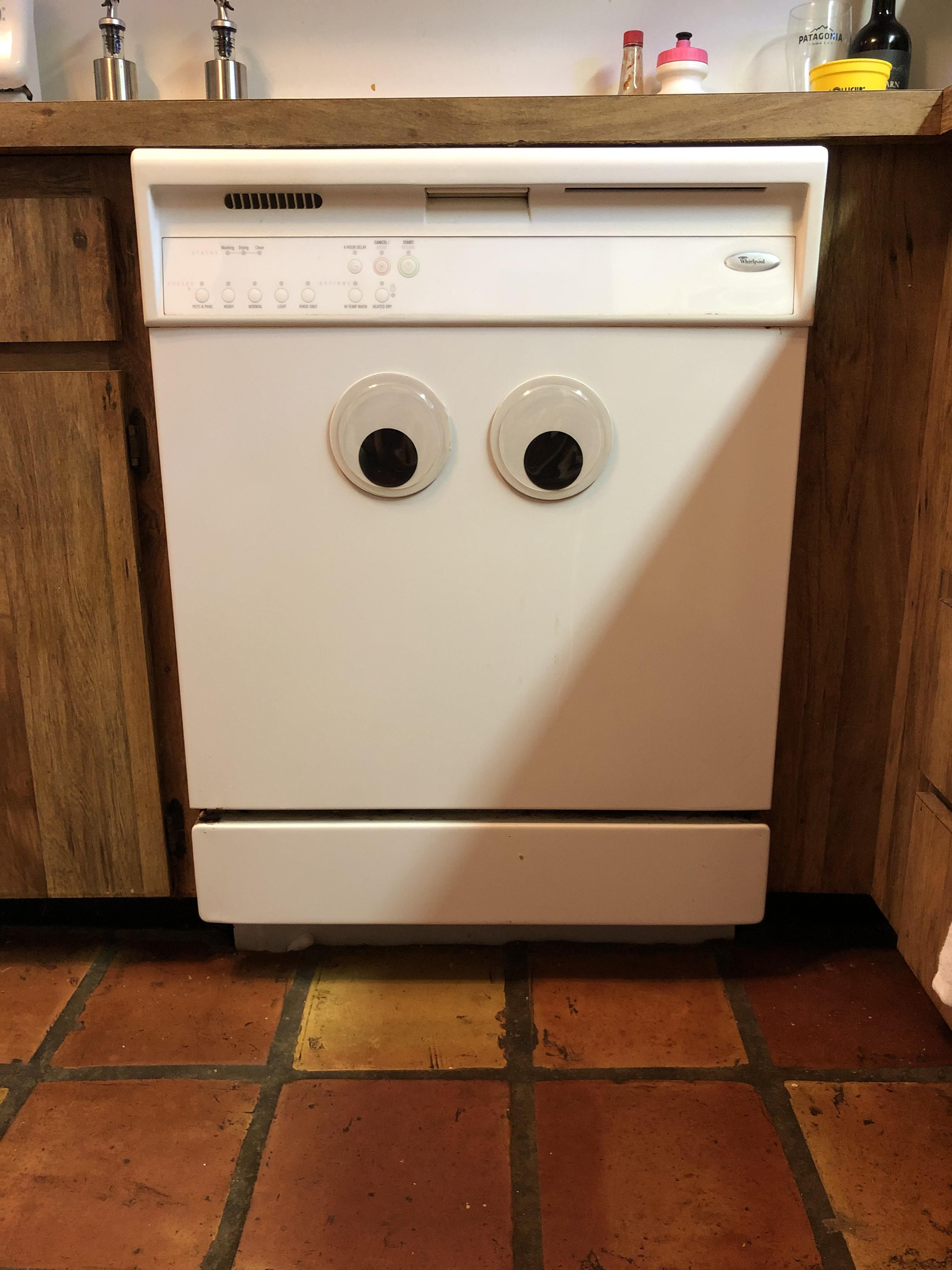 I added googly eyes to our dishwasher. He's not sure about them : |