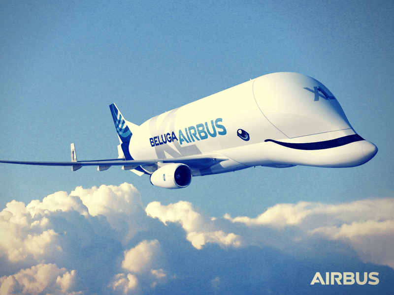 It's a bird, it's a plane, it's... a... Beluga?
