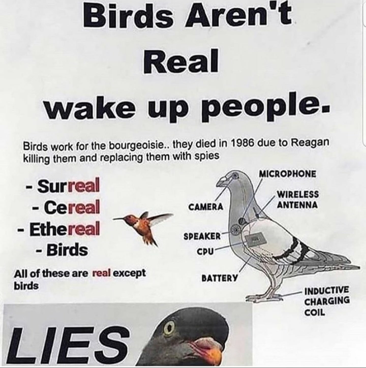 Wake the frick up