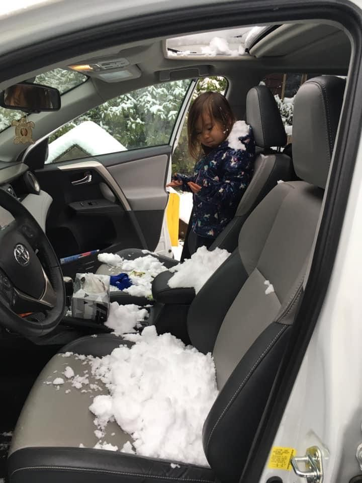 Toddler found the sunroof button